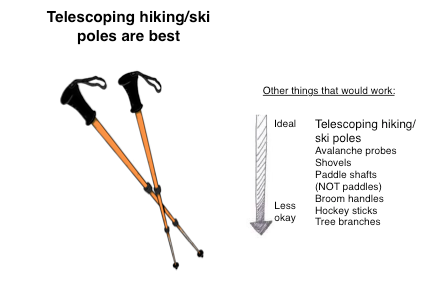 Telescoping hiking or trekking poles are best!